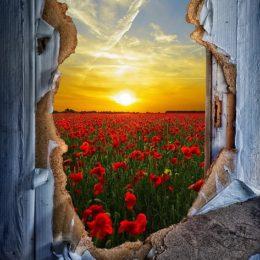 nemít strach otevřít dveře novým obzorům